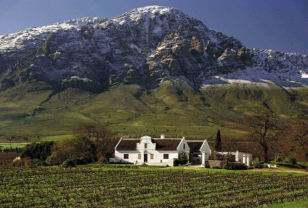 The lush landscape of the Western Cape