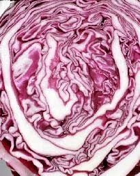 Authentic czech style red cabbage recipe using braising technique.