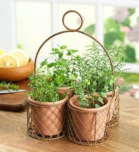 How To Make A Container Herb Garden