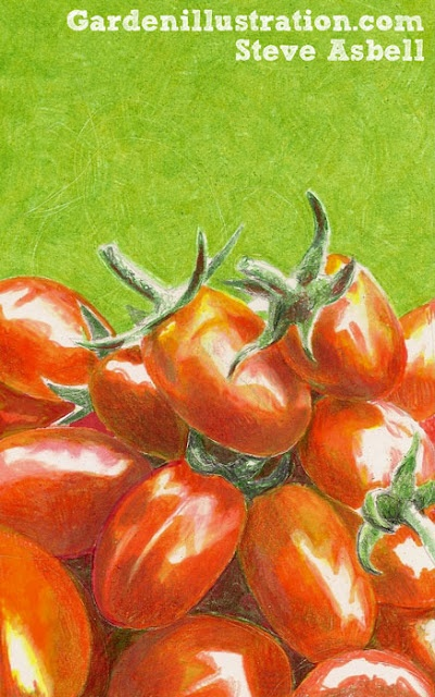 Win a free custom plant illustration at www.therainforestgarden.comArt Lovers, Summer Art, Art Journals, Plants Illustration, Food Drawing, Food Art, Tomatoes Drawing
