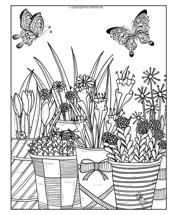 1179 best images about Adult Colouring Flowers on