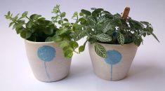 twee plantenpotjes