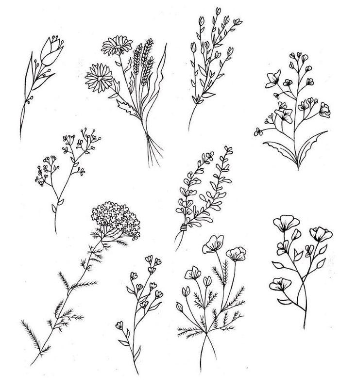 Small Flowers Line Drawing : Les meilleures idées de la catégorie tatouage cactus