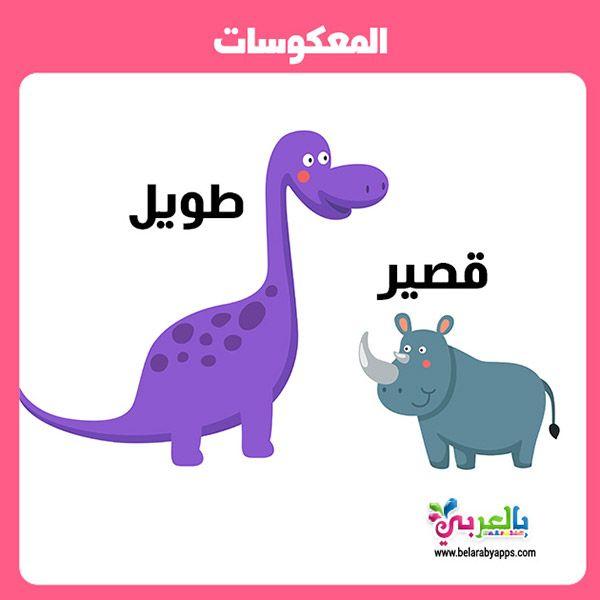 تعليم المتضادات للاطفال Pdf وسائل تعليمية حديثة بالصور بالعربي نتعلم Langue Arabe