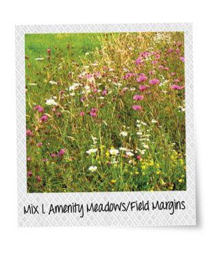 Charles Flower Wildflowers Mix 1. Amenity Meadows /Field Margins