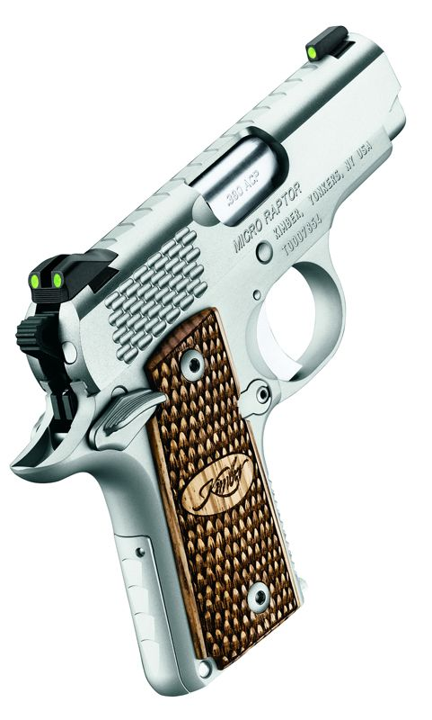 Kimber Micro Carry Raptor Stainless 380 ACP Pistol #HyattGuns #Firearms #Pistols