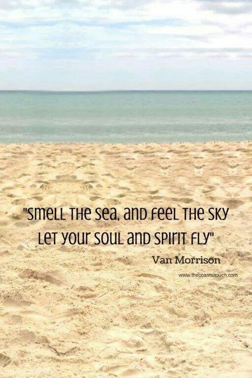 The #sea
