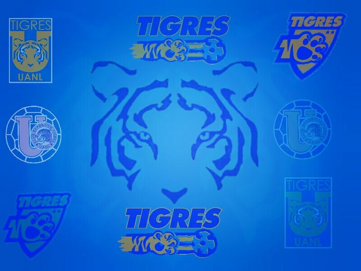 169 best images about Tigres de la U.A.N.L. Wallpapers on Pinterest | Logos, Turquoise wallpaper ...