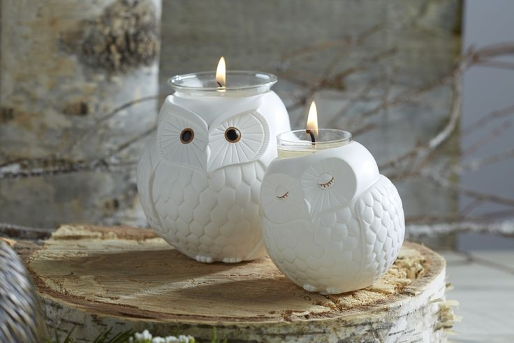 Nature's Love by PartyLite Owl Candle Holders!