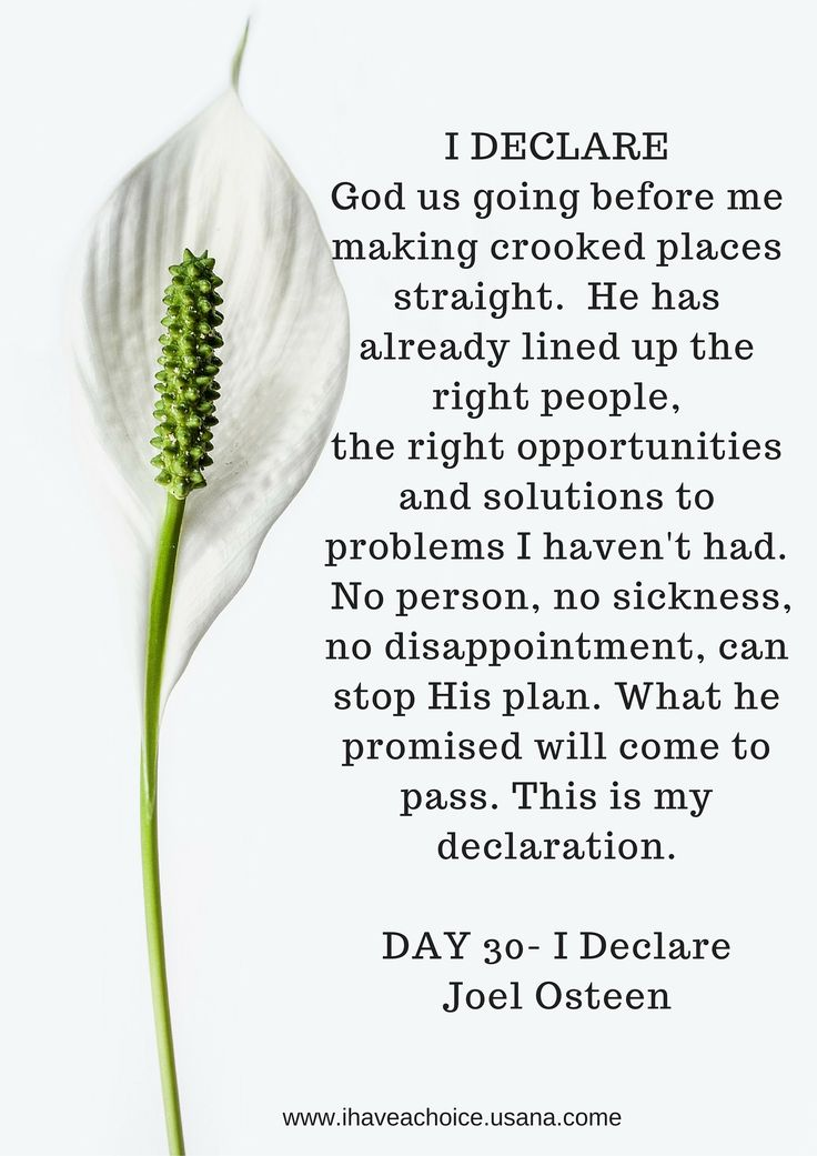 I Declare - Day 30 Joel Osteen