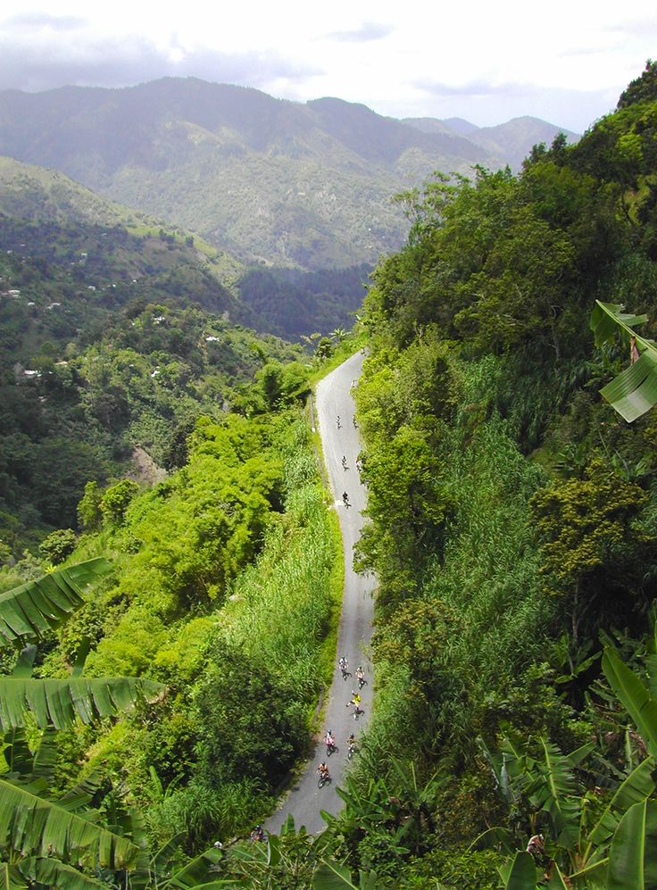 Bicycle adventure in the Blue Mountains         #Jamaica