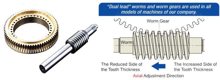Dual lead worm gears