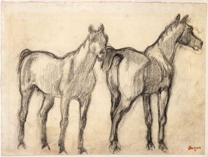 edward degas drawings | Edgar Degas; French, 1834-1917; Two Standing Horses (originally Study ...