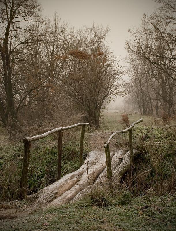 how to build a timber farm bridge