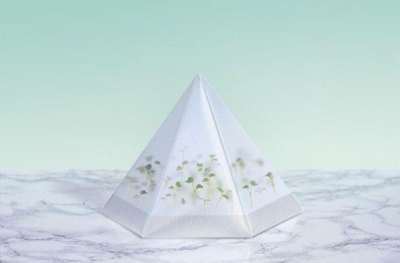 Micro green kit #Packaging #Biobeauty #Sweden #TomorrowMachine  #sustainable #environmental
