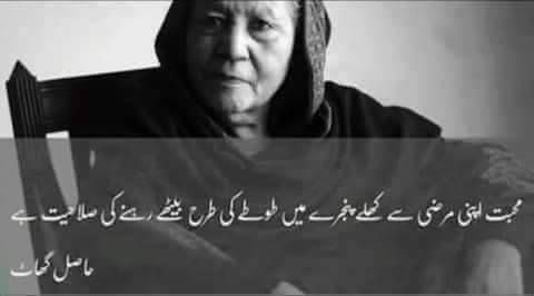 17790 best images about poetry and wisdom on pinterest for Bano qudsia poetry
