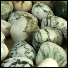 Green Tree Agate (Dendritic agate) is prized in Russia as a stone of long life, good health and prosperity.  It symbolize growth or change.  Dendrites are the branch-like formations of iron or manganese oxide inclusions that crystallize within the stone. Metaphysically, these symbolize growth or change.  Assists with connection with nature, promotes protection of earth and all its creatures, prosperity, wealth, and  abundance stone, helps with creativity, and emotional balance.