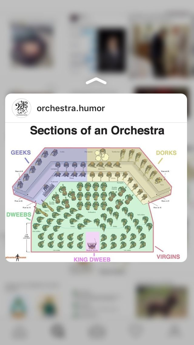 Instagram @orchestra.humor I'm laughing too hard
