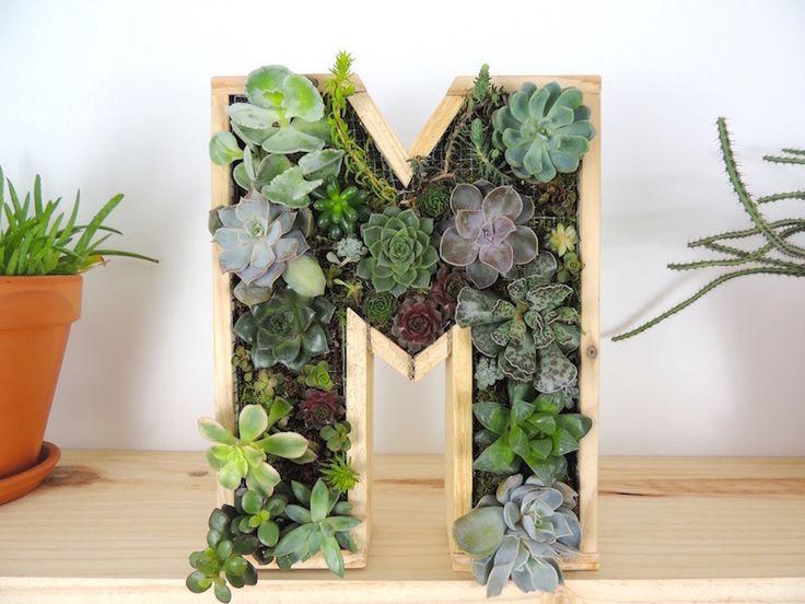 Les 25 meilleures id es de la cat gorie cadre v g tal sur for Fabriquer cadre vegetal mural