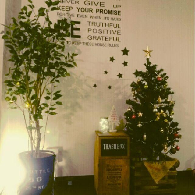 yuta703さんの、リビング,ダイソー,IKEA,ゴミ箱,ウォールステッカー,DIY,ニトリ,セリア,クリスマス,フェイクグリーン,ミカヅキモモコ,男前,すのこリメイク,工作木材,ペール缶,DIYゴミ箱,TRASH BOX,のお部屋写真