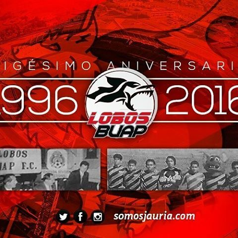 Image result for 1996 lobos buap