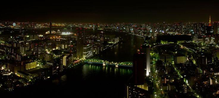 Da molti anni Tokai viveva solo in un appartamento di due camere e cucina al sesto piano di un palazzo signorile del quartiere di Azabu.