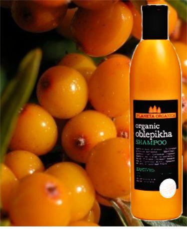 Planeta Organica Rakytníkový šampon Organic| exherbis.cz