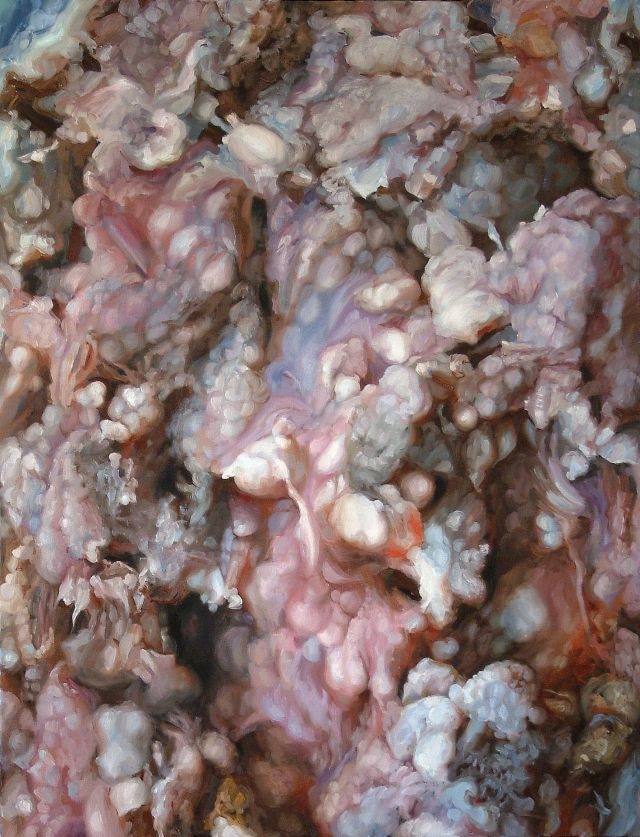 Cindy Wright : Rotten meat