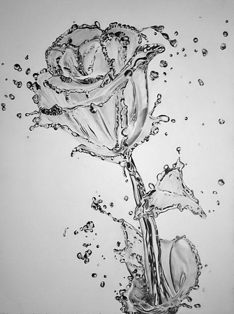 dibujo a lápiz flor de agua http://hative.com/50-amazing-pencil-drawings/  extraordinario