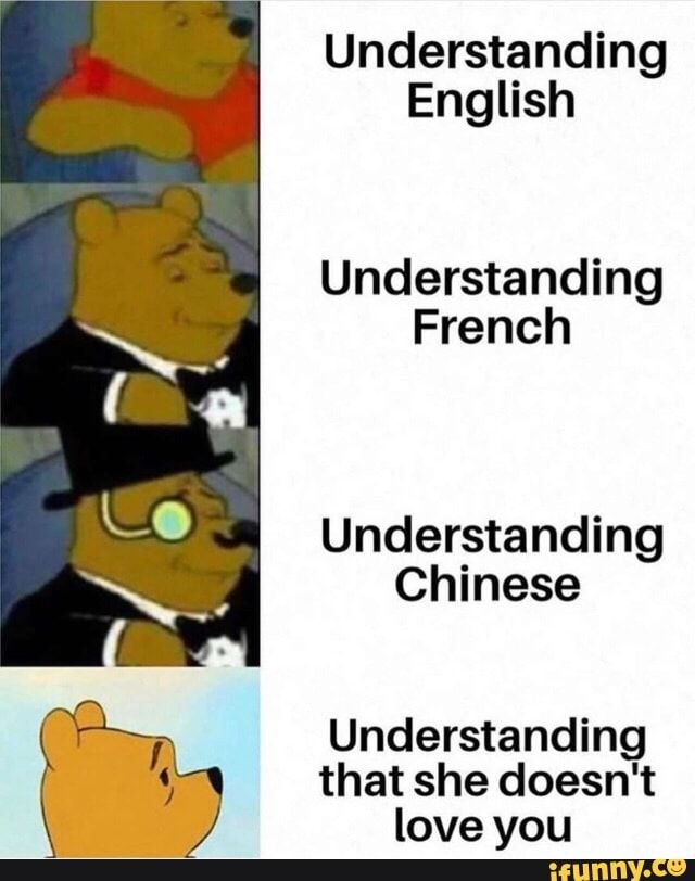 Understanding English Understanding French Understanding Chinese Understanding That She Doesn T Love You Ifunny Memes Dankest Memes Funny Memes