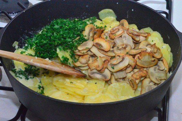 Potatoes With Mushrooms In Cream Recipe