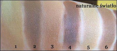 1 - Skinny Dippers Medium Abyssinian 2 - Skinny Dippers Dark Siamese 3 - Skinny Dippers Medium Chartreux 4 - Skinny Dippers Dark Sphynx 5 - Sunsplasher Medium Abyssinian 6 - Sunsplasher Dark Mau