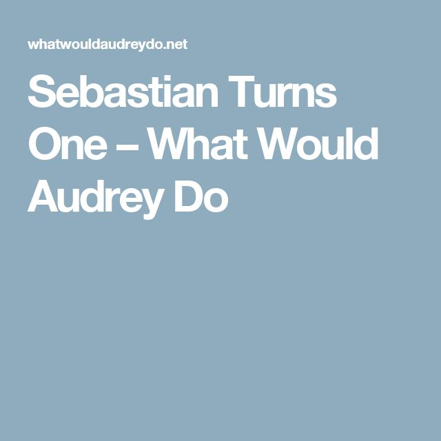 Sebastian Turns One – What Would Audrey Do