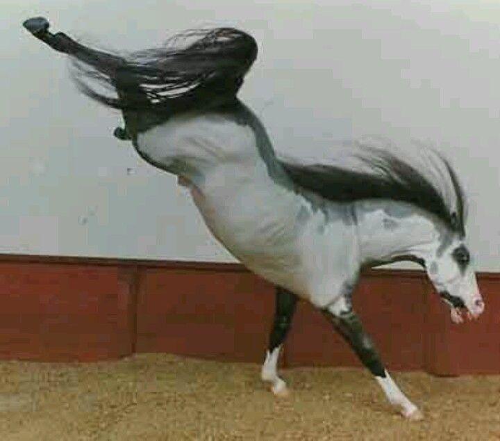 how to change horses mane botw