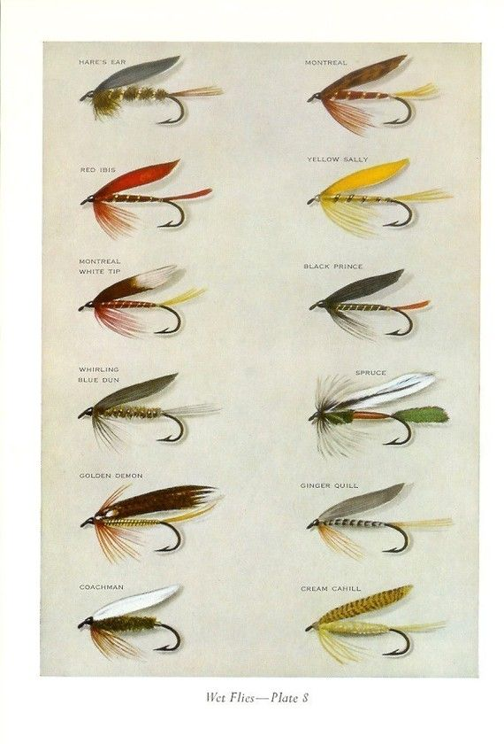 1968 Fishing Print  Wet Flies Plates 7 and 8  Vintage by Holcroft, $10.00