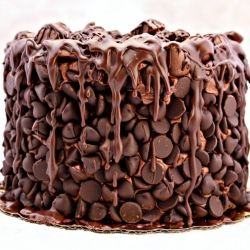 Chocolate Wasted Cake...omg my hubby would love