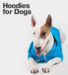 Hoodies for Dogs by AmericanApparel. Bailey would have loved this!