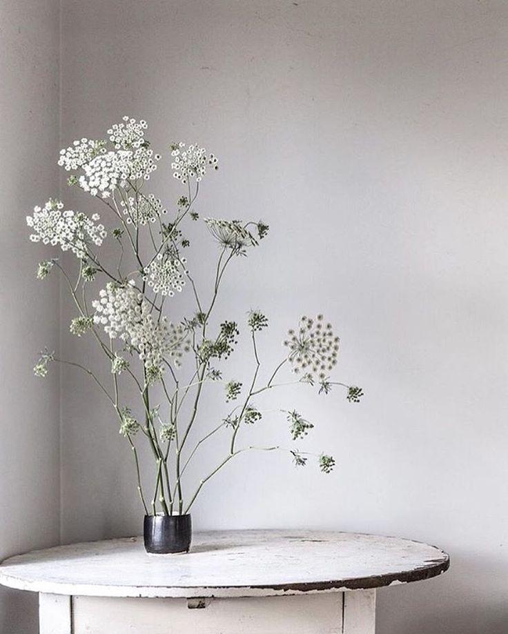 45 best Zarte Blumen und Zweige images on Pinterest
