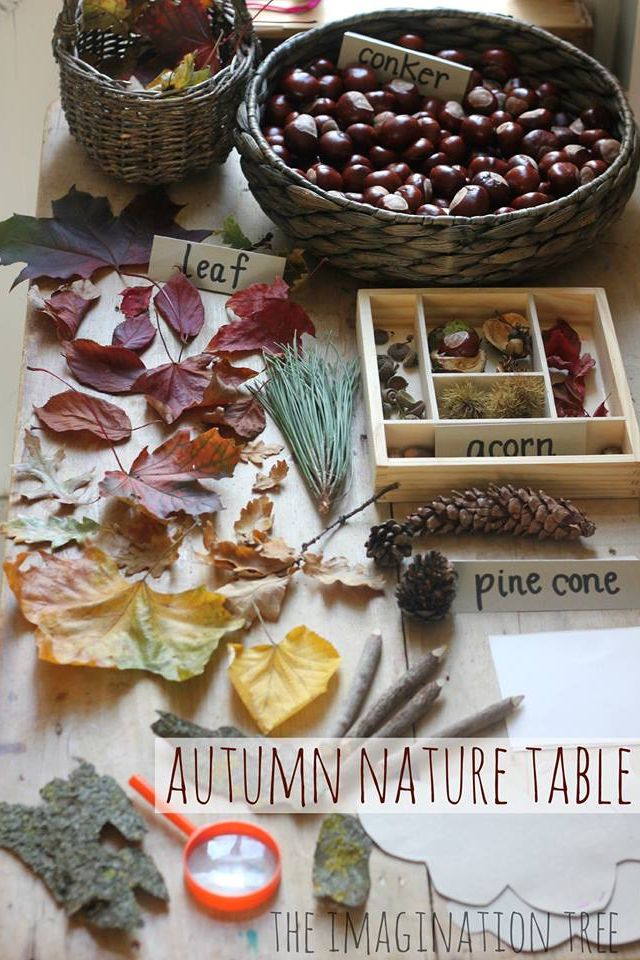 Lovely autumn exploration table!