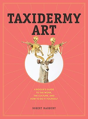 Taxidermy Art rogue guide by Robert MarburyWhether you are an aspiring taxidermist or just love the art form, this book is for you. Taxidermy Art is a guide to the culture of rogue taxidermy and the artists who work tirelessly to bring taxidermy out of the dusty shelves of natural history museums into the spotlights of modern art. The book also includes lessons and resources to help you get started.