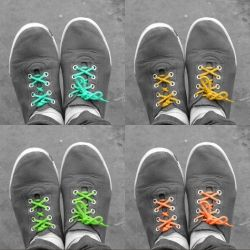 -DIY- multi-color your world with picmonkey; online free photo software.