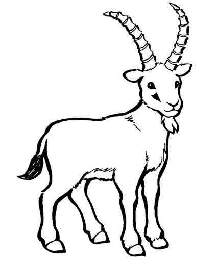 sheep and goats coloring pages-#30