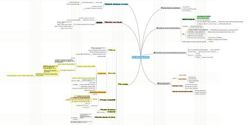 MindMeister Mind Map: Plan :Veille sanitaire des RPS