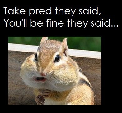 If you haven't got the joke prednizone is a prescription steroid that gives you a moon face or chipmunk cheeks