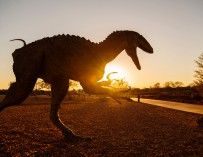 Walking with dinosaurs: Outback Queensland's dinosaur trail from Townsville 3/4 days