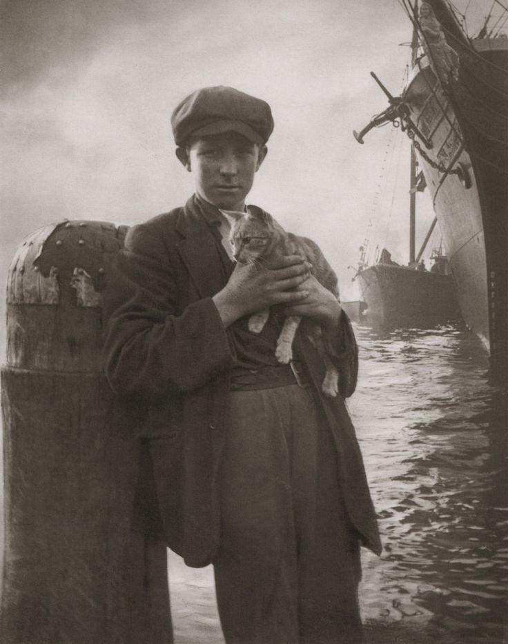Harold Cazneaux - The Ship's Cat, Sydney, circa 1912 From Harold Cazneaux - The Quiet Observer