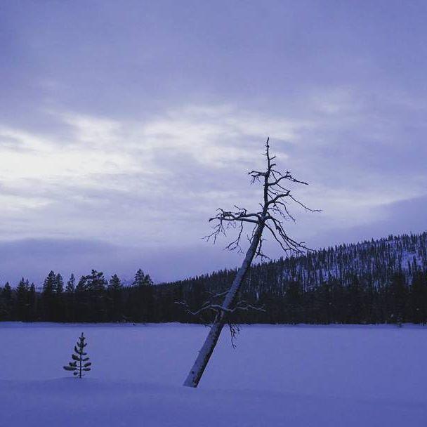 Hiihtokauden avaus.  Olipa se taas hauskaa!  First day skiing this winter ❄⛄#crosscountryskiing #hiihto #pallasyllastunturinkansallispuisto  #nationalpark  #laplandfinland #snow #winter