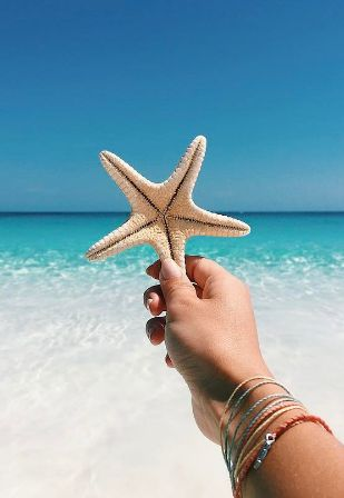 When you wish upon a star.... you might be in the Bahamas on beautiful Harbour Island!
