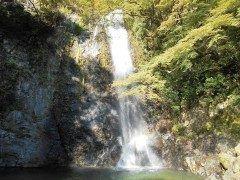 大阪府箕面市にある箕面の滝はマイナスイオンたっぷりのおすすめスポット 日本の滝100選にも選ばれている滝です 最寄りの箕面駅から箕面の滝まで往復約キロのある山道はハイキングコースとしても人気 ぜひハイキングを楽しんだ後に圧巻の箕面の滝を楽しんでください これからの季節は紅葉も綺麗ですよ()v tags[大阪府]