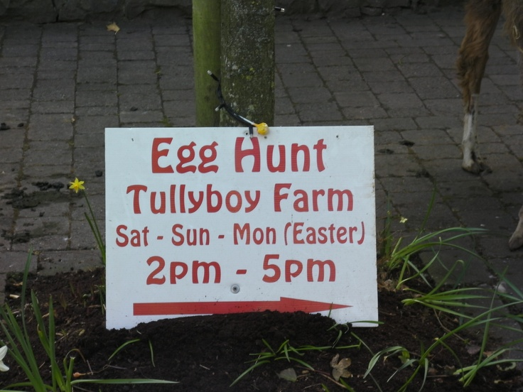 Tullyboy farm is a great place for a day day out. They have a variety of Family fun events throughout the year!  www.tullyboyfarm.com